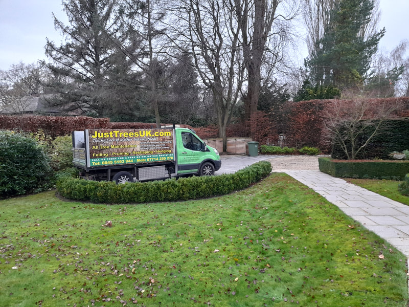 Hedge Maintenance in Hale Barns, Cheshire