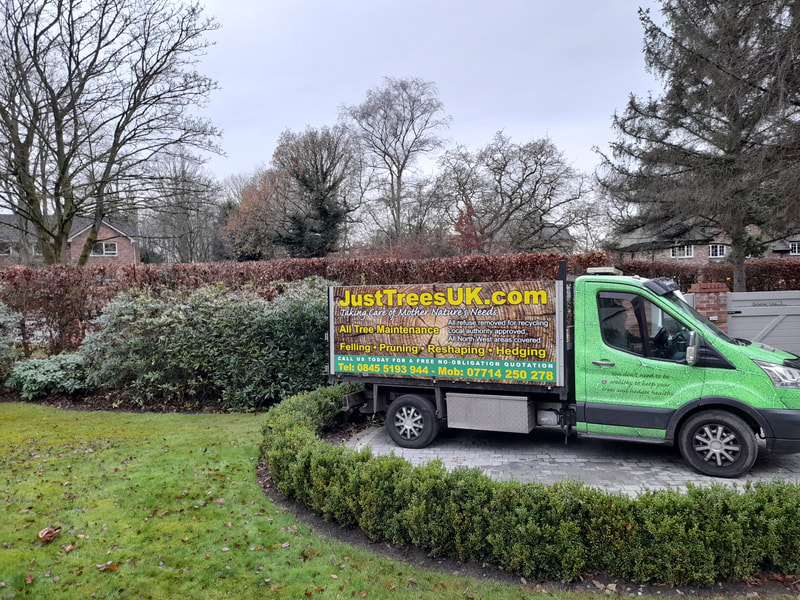 Hedge Trimming in Hale Barns, Cheshire
